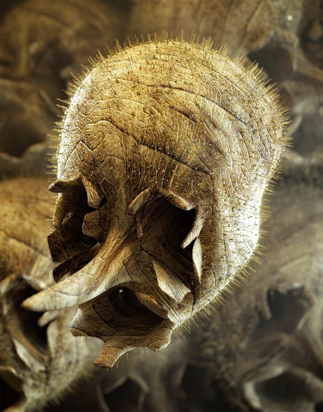Snapdragon Skull store
